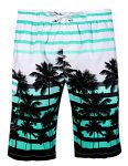 APTRO-Mens-Colorful-Stripe-and-Coconut-Tree-Printing-Beach-Board-Shorts-1525-Aqua-XL-0