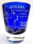 Guyana-Cobalt-Blue-Shot-Glass-0