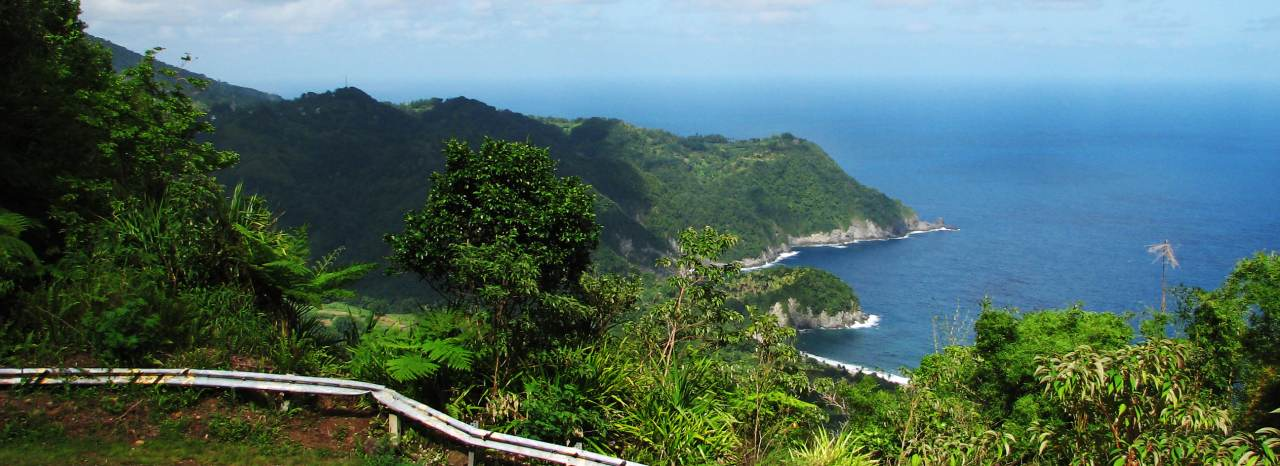 dominica-hill-view